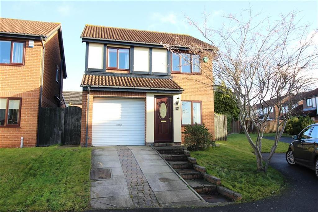 3 Bedrooms Detached House for sale in Edgemount, Newcastle Upon Tyne