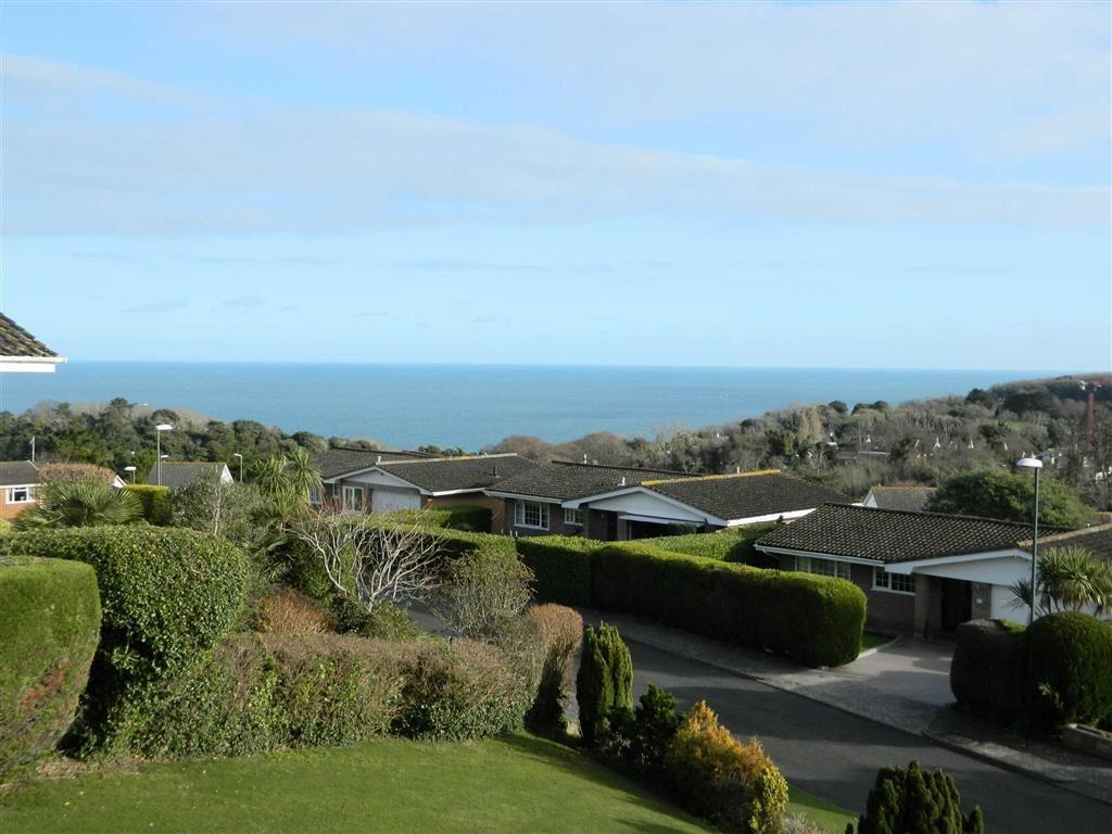 5 Bedrooms Detached House for sale in Den Brook Close, Torquay, TQ1
