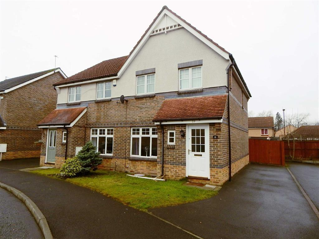3 Bedrooms Semi Detached House for sale in Church View, Wallsend, Tyne And Wear, NE28