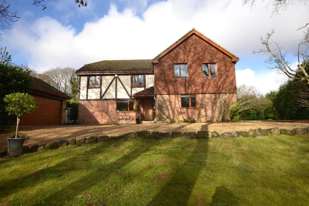 4 Bedrooms Detached House for sale in Webster Way, Alverstone Garden Village