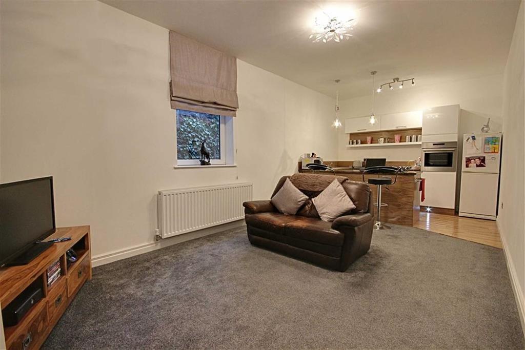 1 Bedroom Ground Maisonette Flat for sale in Sussex Street, Jarrow, Tyne And Wear