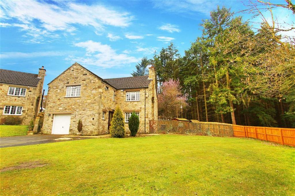 4 Bedrooms Detached House for sale in Fernwood Grove, Hamsterley Mill