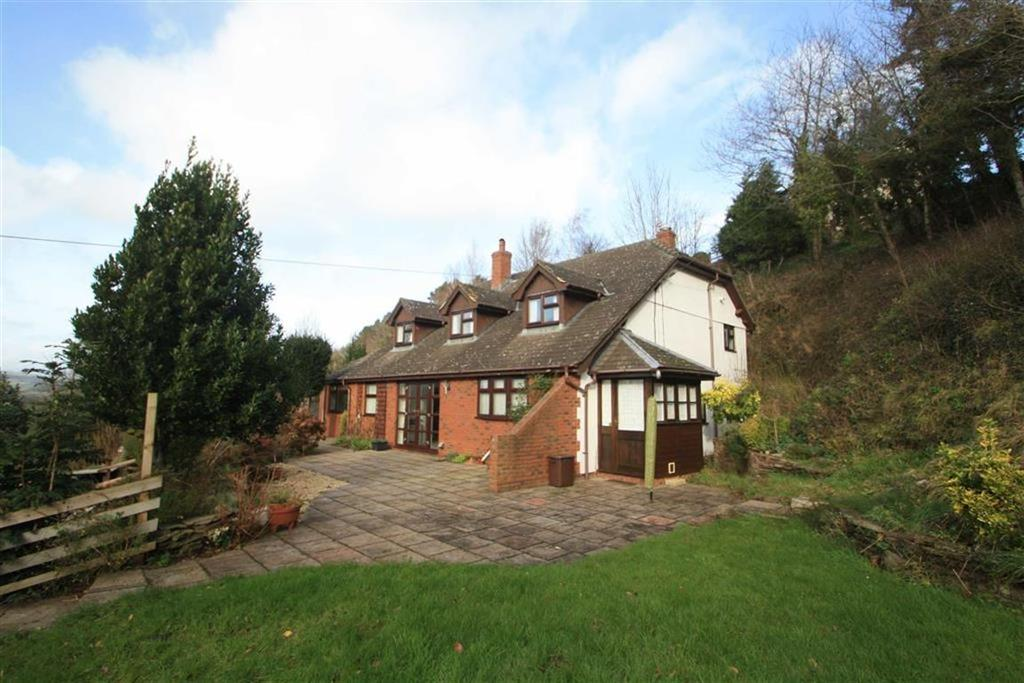 4 Bedrooms Detached House for sale in VOWCHURCH COMMON, Vowchurch Hereford, Herefordshire