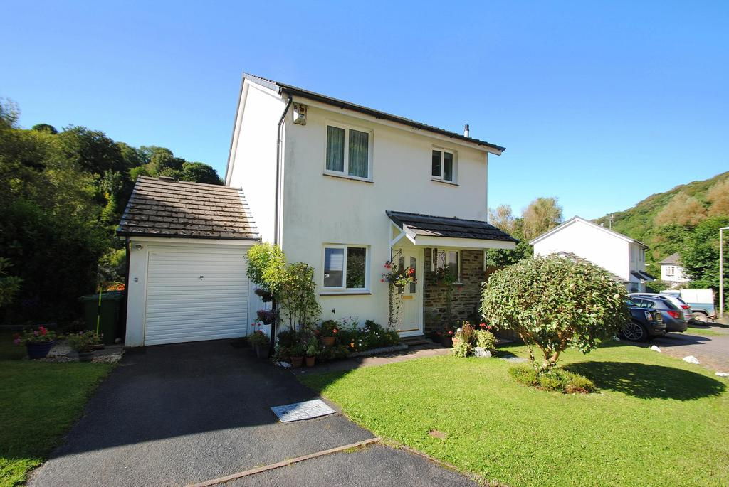 3 Bedrooms Detached House for sale in Saltmer Close, Ilfracombe
