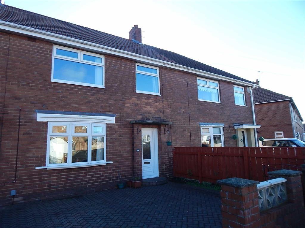 3 Bedrooms Terraced House for sale in Kendal Gardens, Howdon, Wallsend, NE28