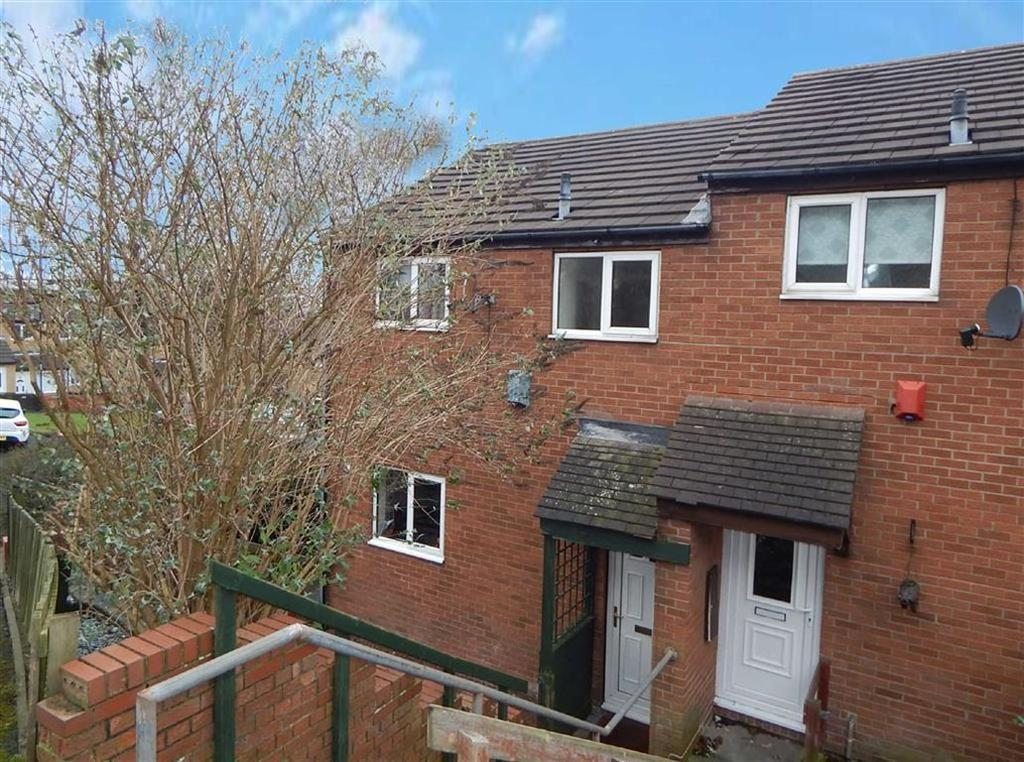 3 Bedrooms Terraced House for sale in Clydesdale Mount, Byker, Newcastle Upon Tyne, NE6