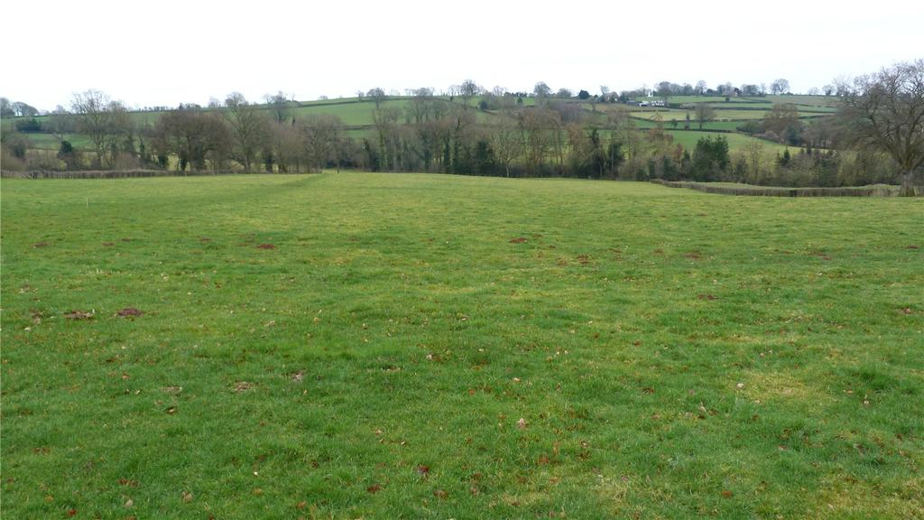 Land Commercial for sale in Lever Hill Farm, Kimbolton, Leominster