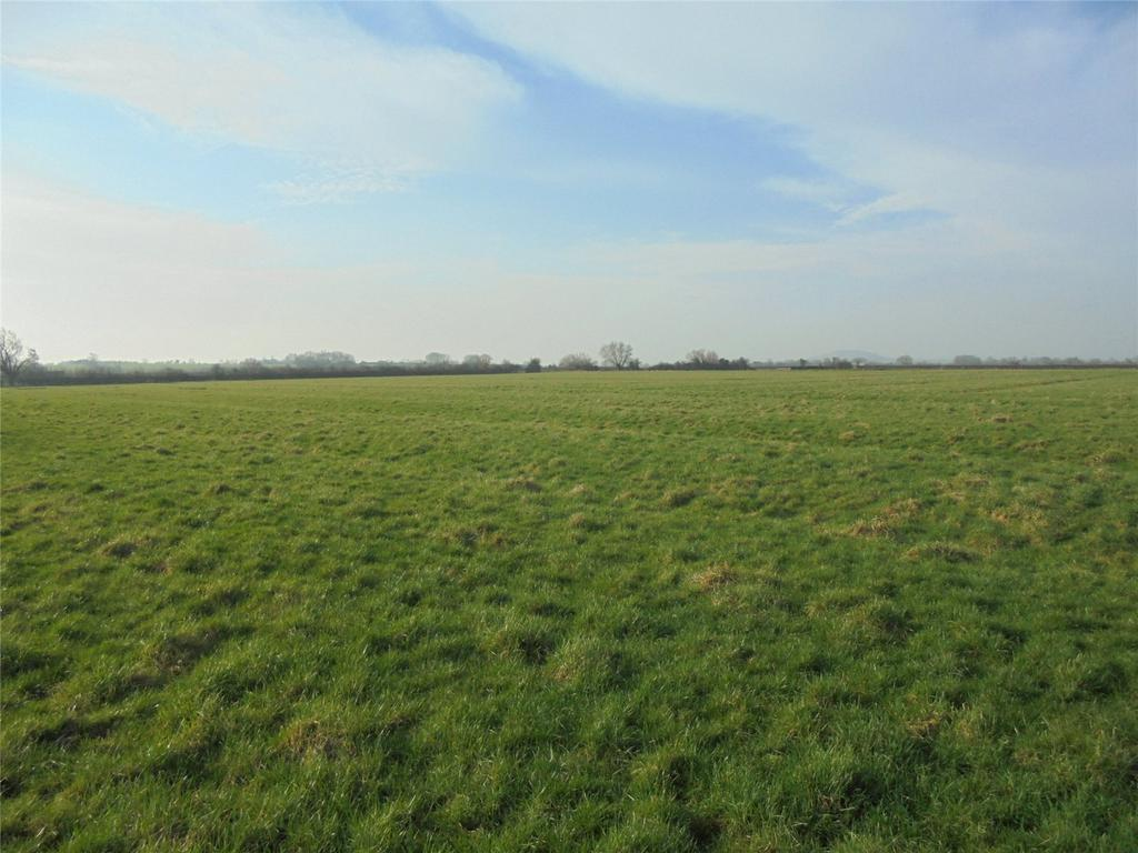 Land Commercial for sale in Lower Weare, Axbridge, Somerset, BS26