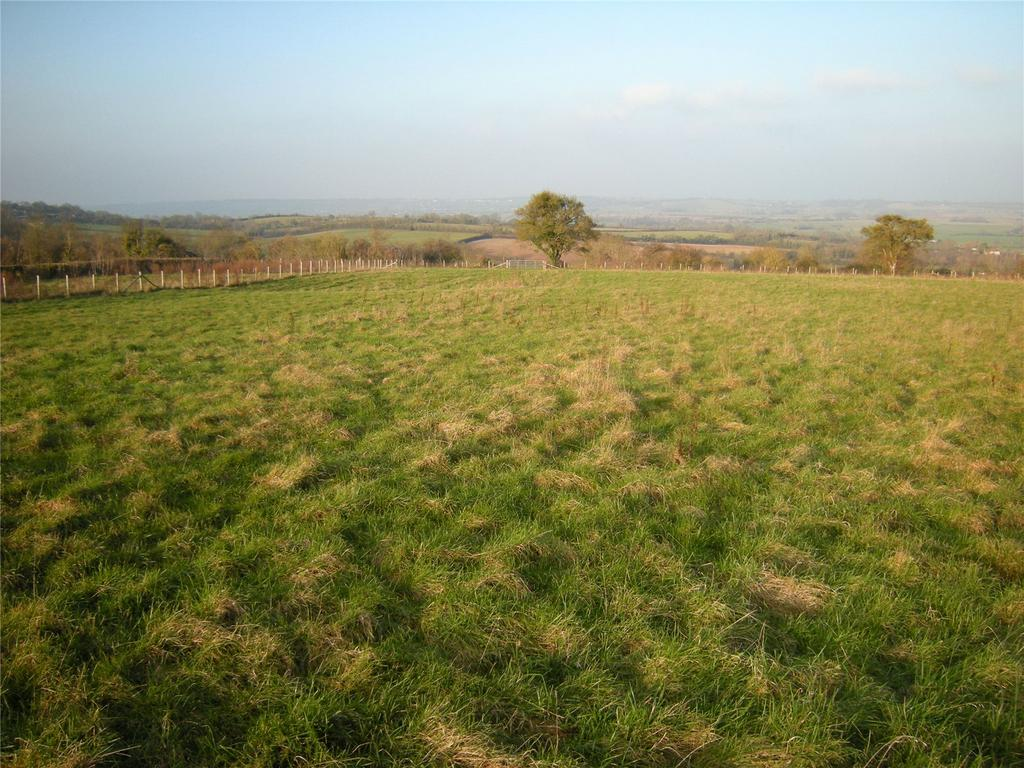Land Commercial for sale in Pasture Land, Windmill Lane, High Ham, Langport, Somerset, TA10