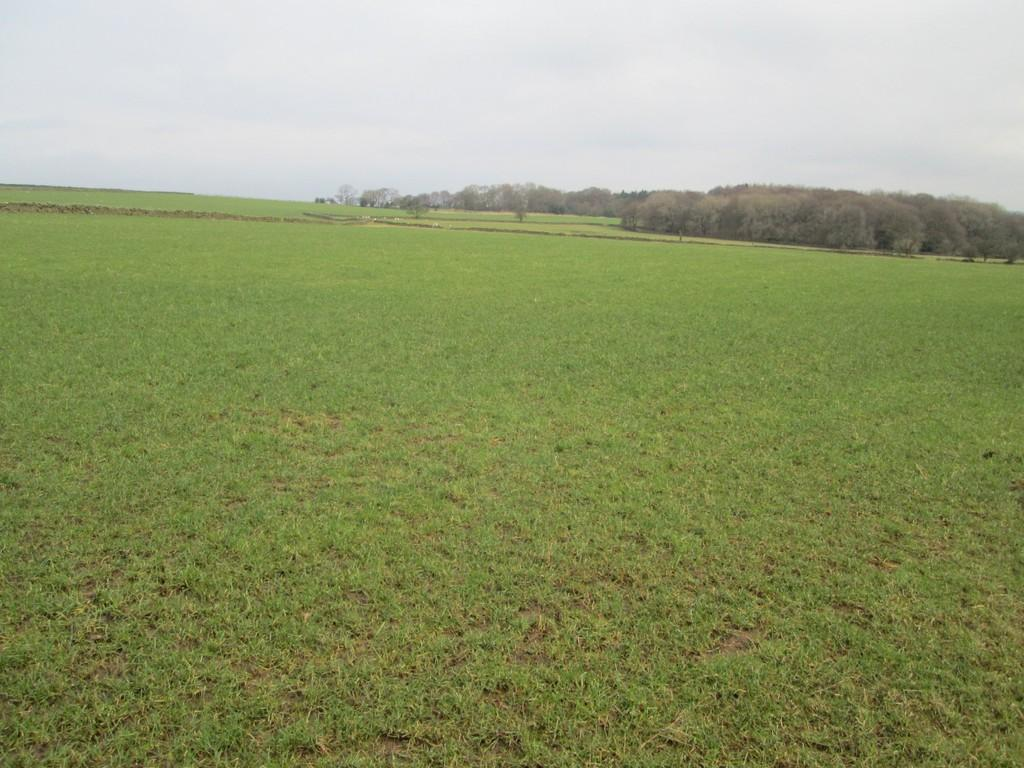 Land Commercial for sale in Hartwith, Harrogate