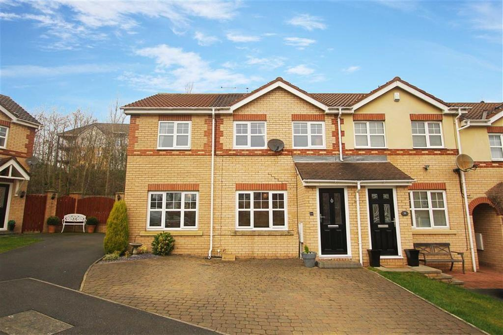 3 Bedrooms Terraced House for sale in Chirton Dene Quays, North Shields
