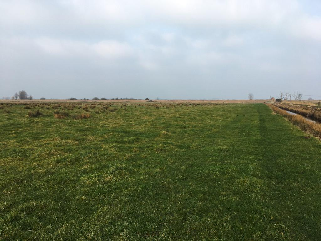 Land Commercial for sale in Marsh Road, South Walsham