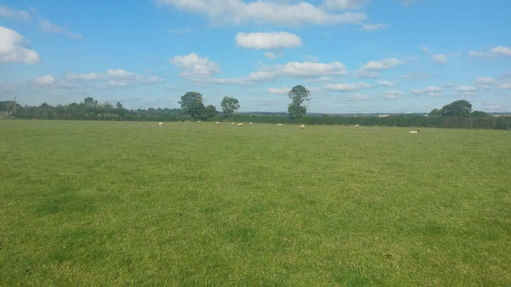 Land Commercial for sale in Westgate Carr Road, Pickering