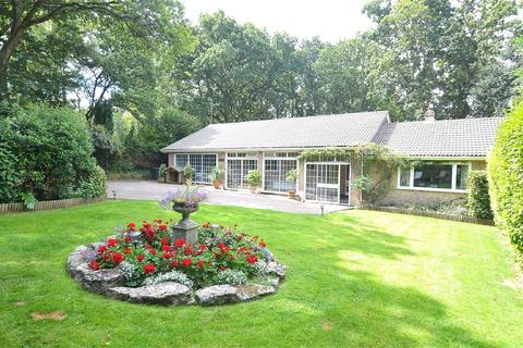 5 bedroom detached bungalow for sale - Higher Blandford Road, Corfe Mullen, WIMBORNE