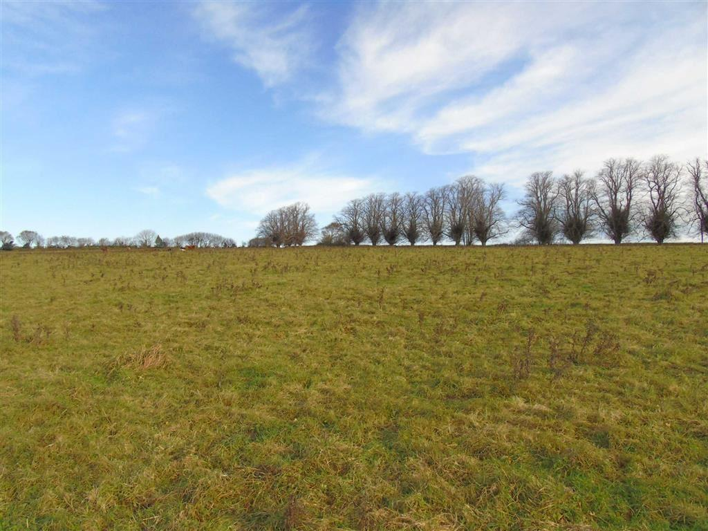 Land Commercial for sale in Kilworthy Road, Tavistock, Devon