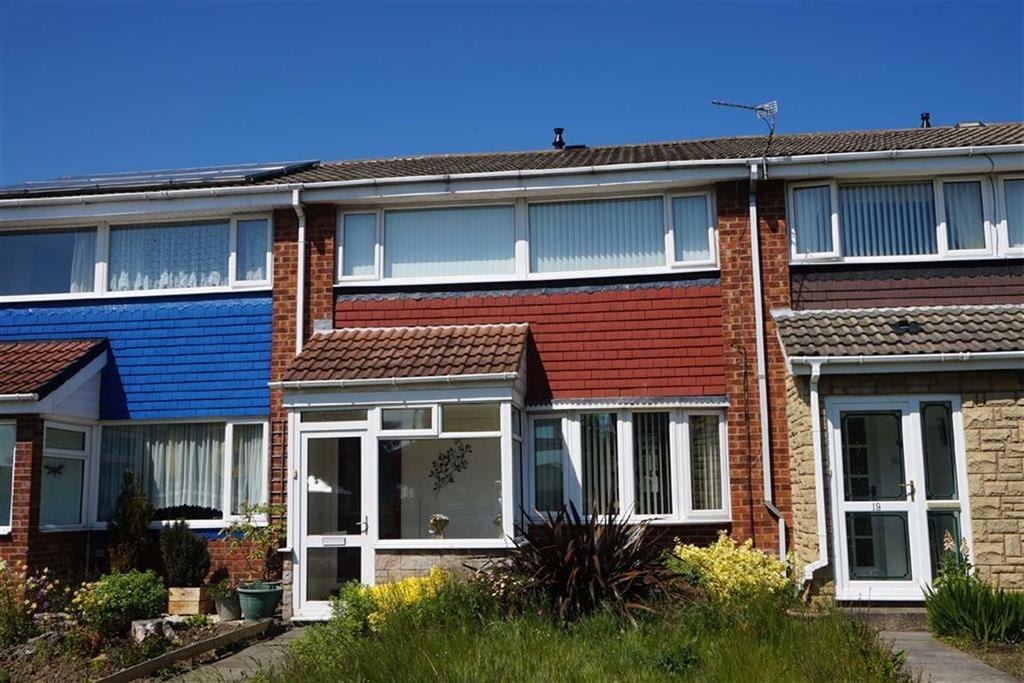 3 Bedrooms Terraced House for sale in Birch Grove, Battle Hill, Wallsend, NE28