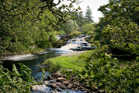 Land for sale - Fishing Timeshare - Week 25, River Forss, Thurso, Caithness