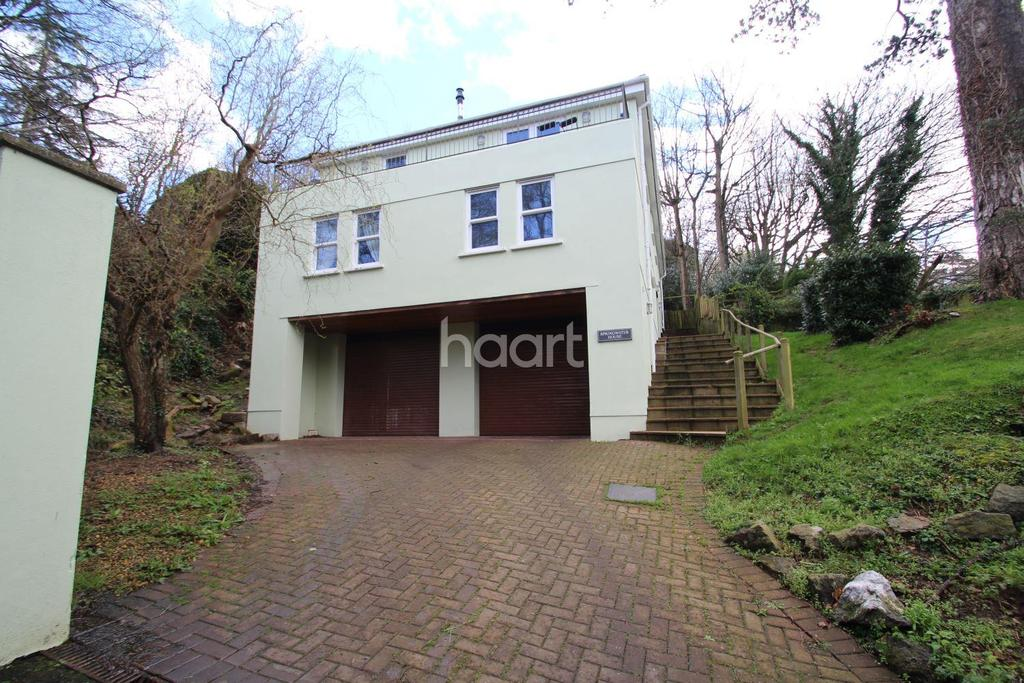 4 Bedrooms Detached House for sale in Lower Erith Road, Torquay