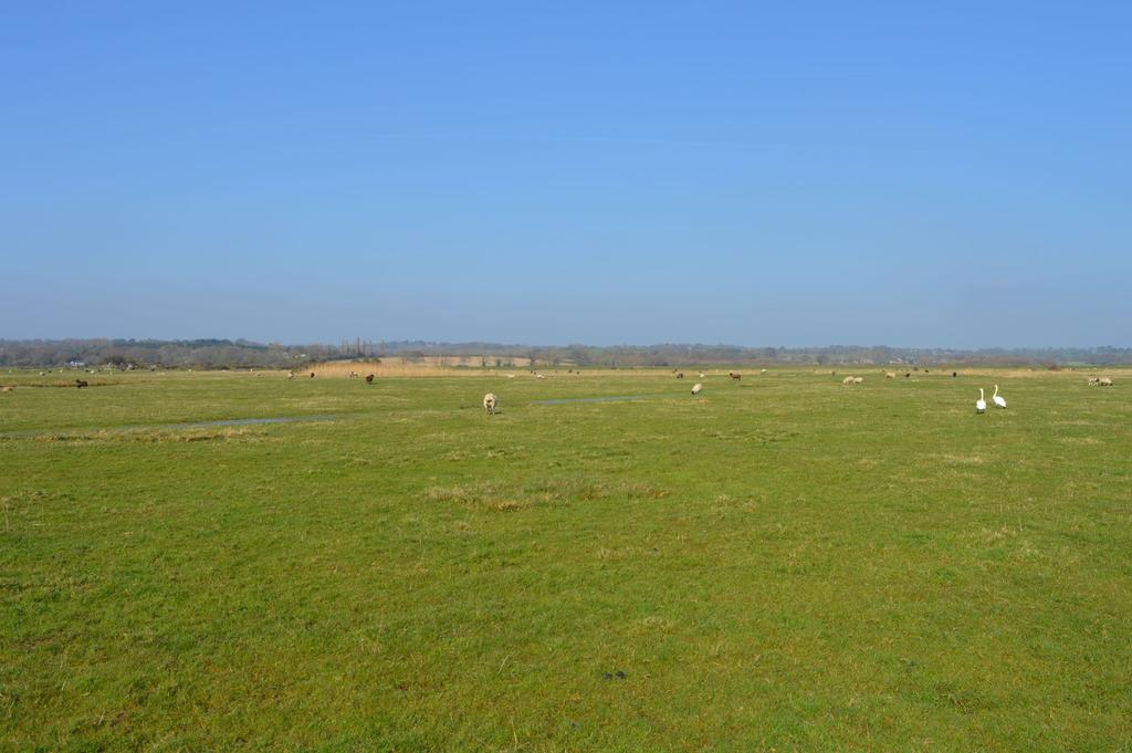 Land Commercial for sale in Hailsham, BN27
