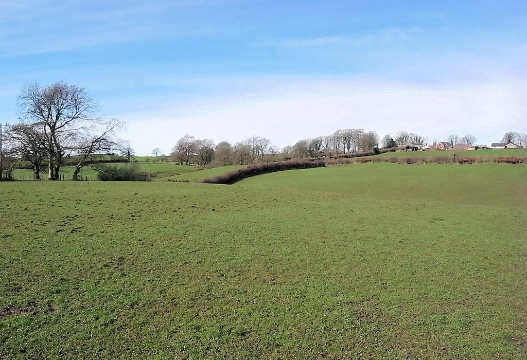 Farm Land Commercial for sale in Walton, Brampton CA8