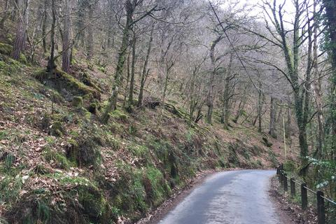Land for sale - Brendon, Exmoor National Park