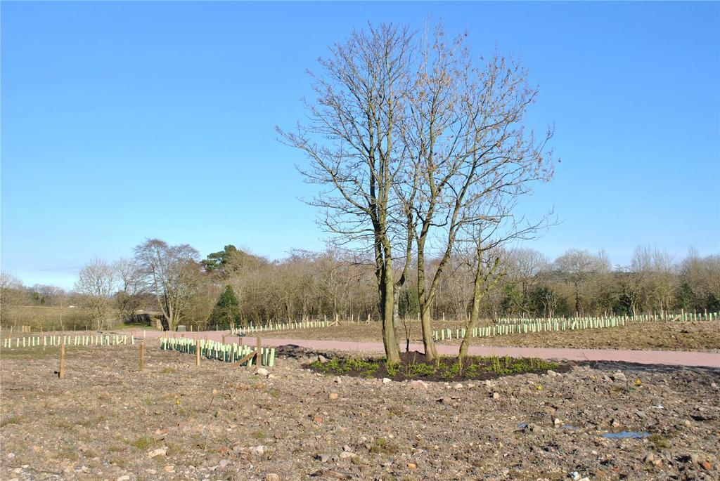 Equestrian Facility Character Property for sale in Netherton Farm Plot 3, Candie, Maddiston, By Falkirk