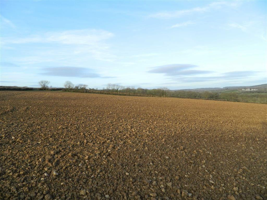 Land Commercial for sale in Clawton, Holsworthy, Devon, EX22