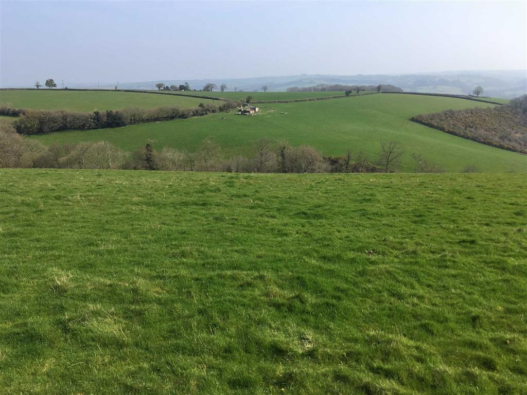 Land Commercial for sale in Bridge Reeve, Chulmleigh, Devon, EX18