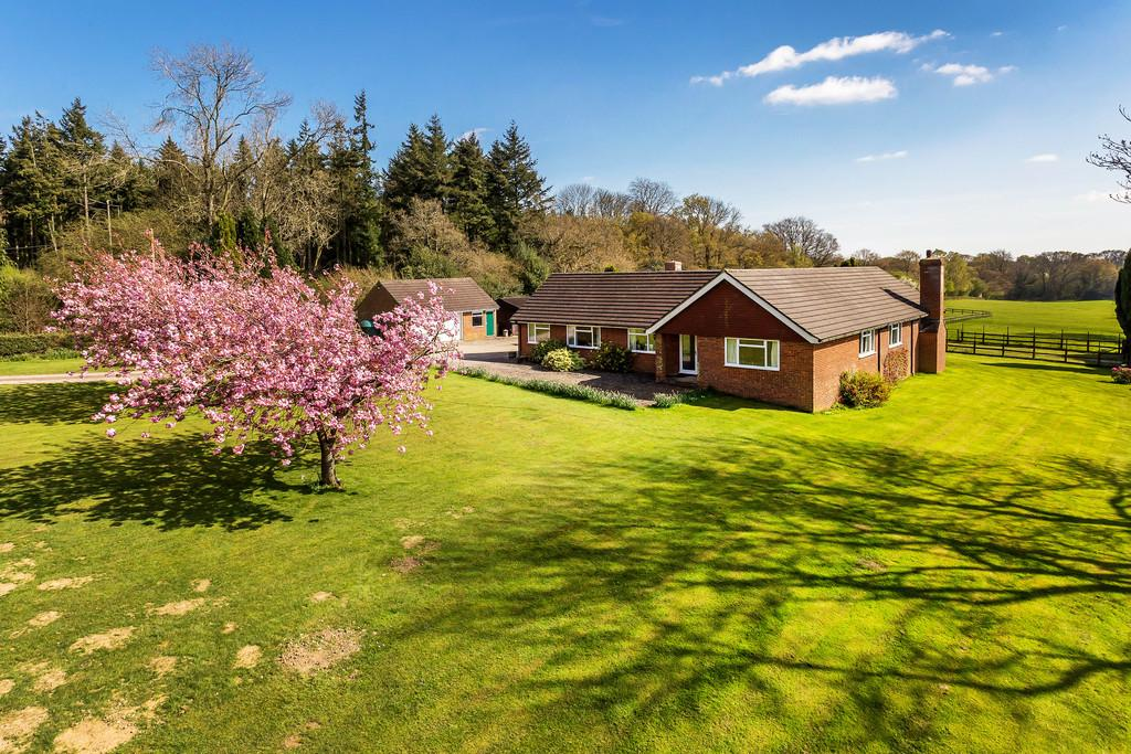 4 Bedrooms Detached Bungalow for sale in Petersfield Road, Monkwood, Ropley, Hampshire