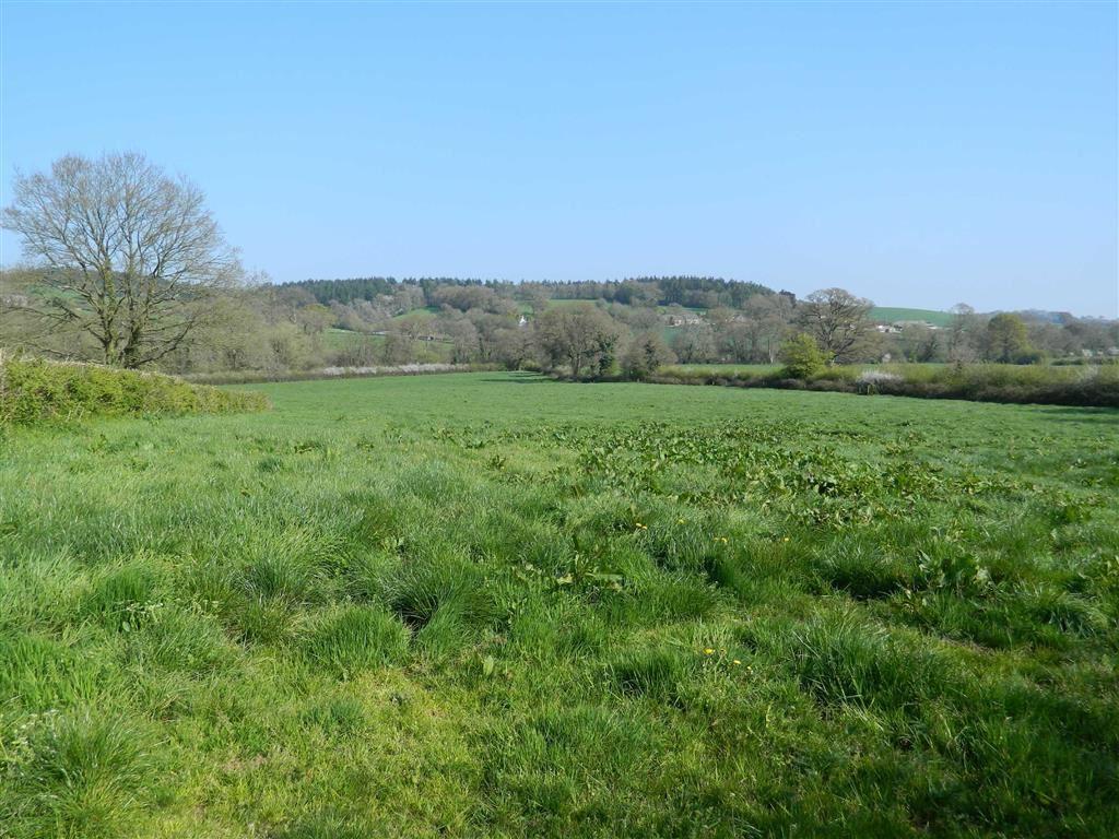 Land Commercial for sale in Long Barn, Sandford, Crediton, Devon, EX17