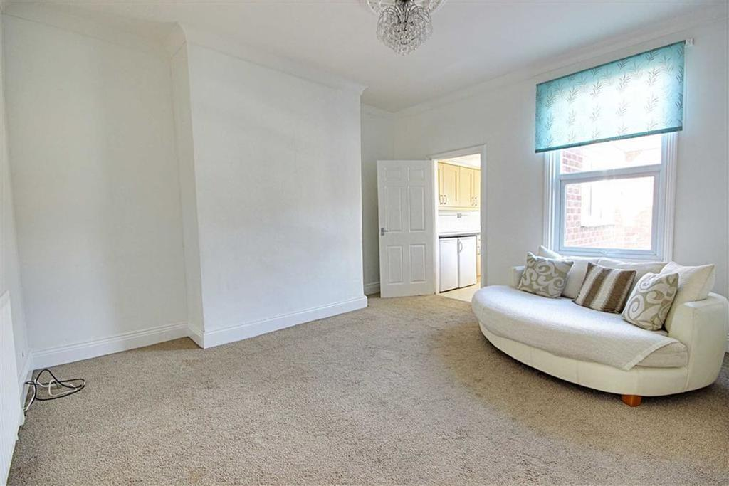 3 Bedrooms Flat for sale in East Stainton Street, South Shields, Tyne And Wear