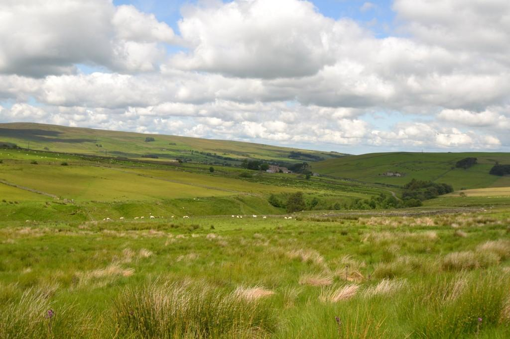 Land Commercial for sale in Sinderhope, Hexham
