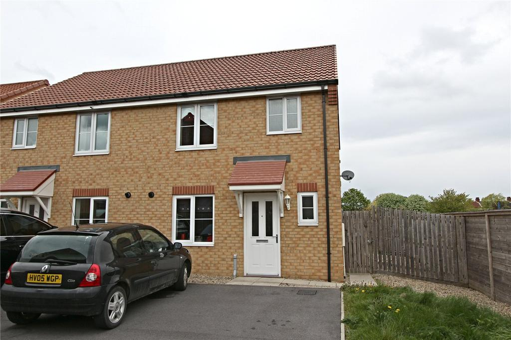 3 Bedrooms Semi Detached House for sale in Douglas Street, Middlesbrough