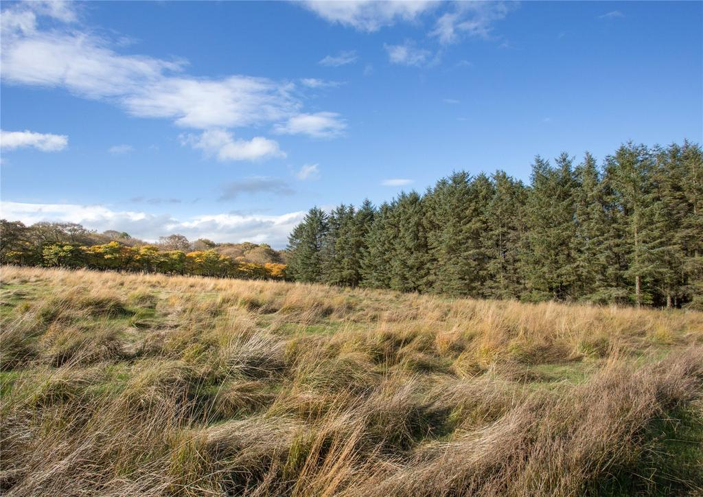 Coylton Ayr Ayrshire Farm For Sale 163 745 000