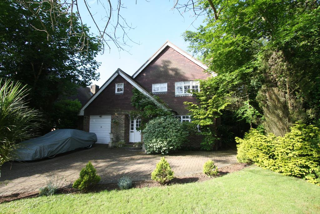 3 Bedrooms Detached House for sale in The Outlook, Friston BN20