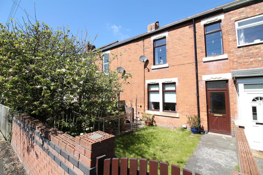3 Bedrooms Terraced House for sale in South View, Newcastle Upon Tyne