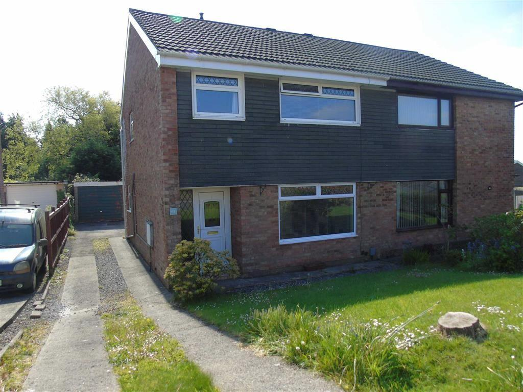 3 Bedrooms Semi Detached House for sale in Rhodfa Dryw, Parc Gwernfaog, Swansea