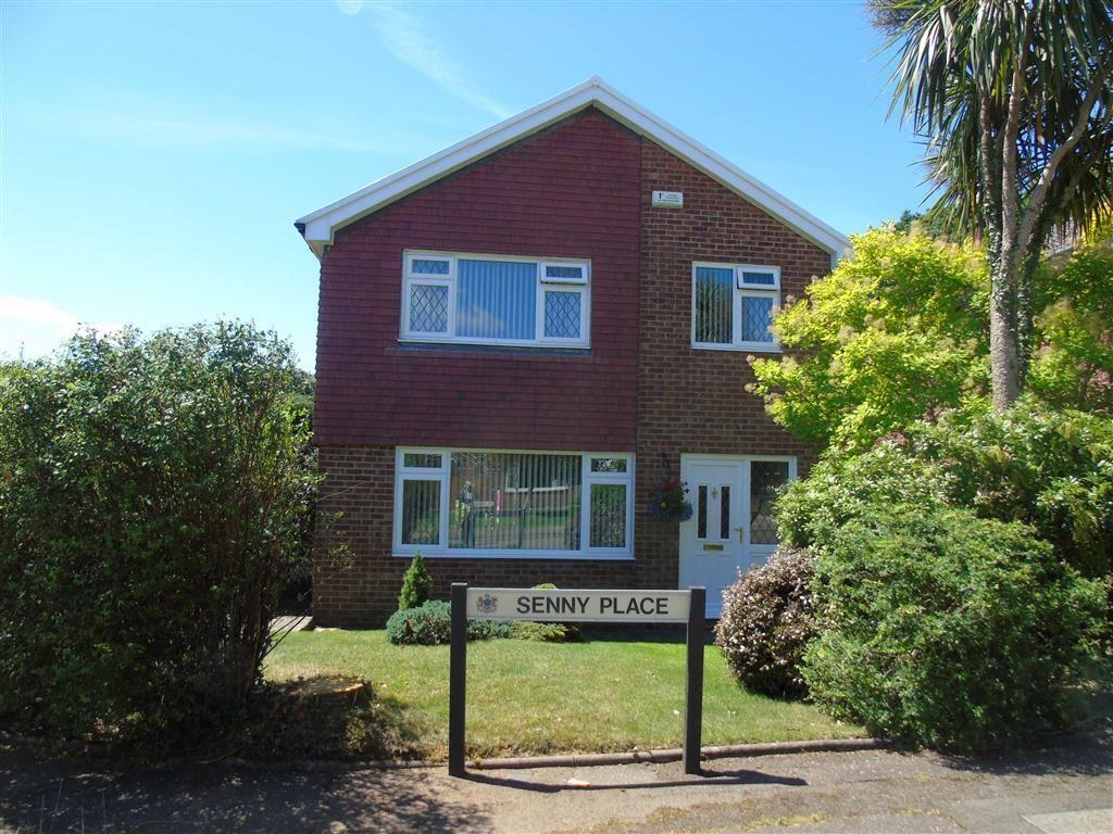 4 Bedrooms Detached House for sale in Senny Place, Parc Gwernfadog, Swansea