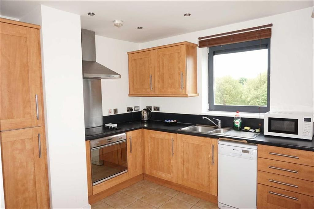 2 Bedrooms Apartment Flat for sale in Bath Lane, Leicester