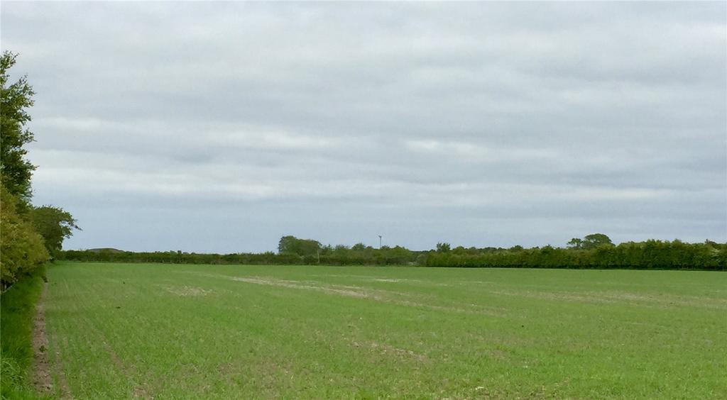Land Commercial for sale in Newton Arlosh, Wigton, Cumbria, CA7