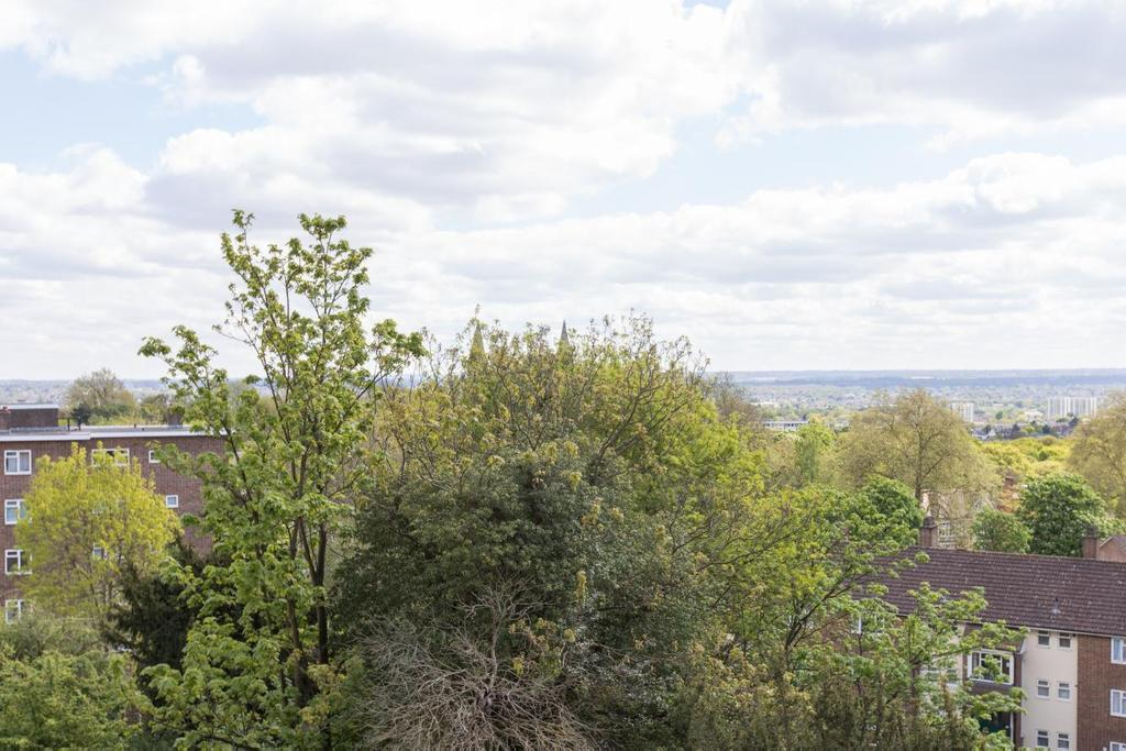 2 Bedrooms Flat for sale in Sylvan Hill, Crystal Palace, SE19