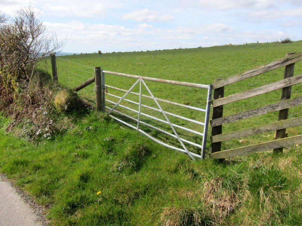 Farm Land Commercial for sale in Land Nr Cefngwyn Farm, Abergorlech Rd, Horeb, Nr Brechfa