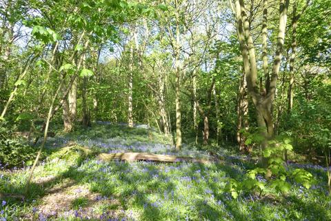 Land for sale - Hall Wood, Hall Lane, Shenfield, Brentwood, CM15