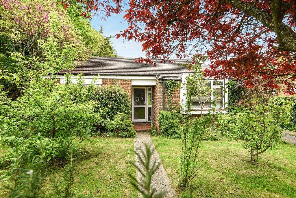 3 Bedrooms Detached Bungalow for sale in Alresford, Hampshire