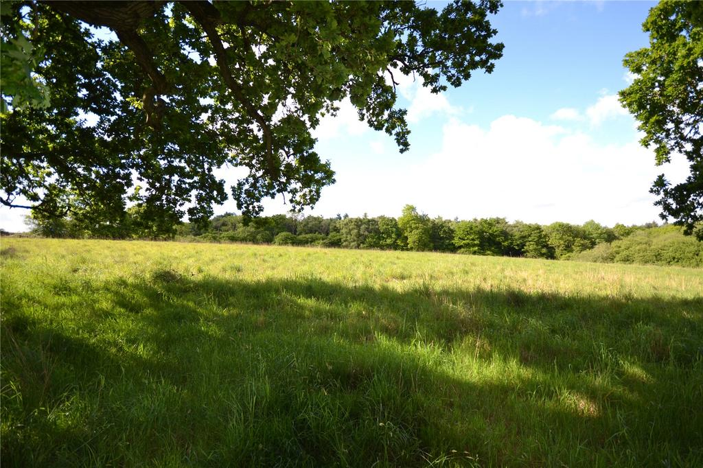 Equestrian Facility Character Property for sale in Off Summer Lane, Beaulieu, Brockenhurst, Hampshire, SO42