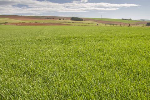 Farm for sale - Land At Pitskelly Farm, Fordoun, Laurencekirk, Aberdeenshire, AB30