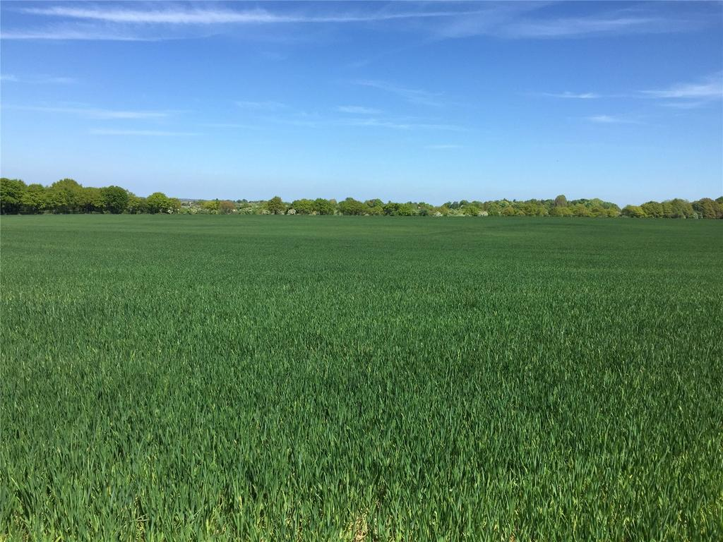 Land Commercial for sale in Kiln Road, North Weald, Epping, Essex, CM16
