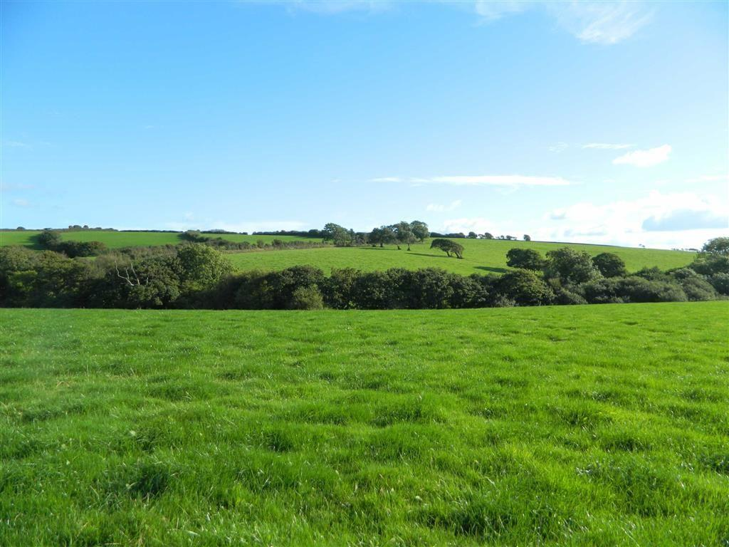 Land Commercial for sale in Boyton, Launceston, Cornwall, PL15