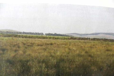 Farm land for sale - Lampeter
