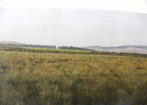 Farm Land Commercial for sale in Lampeter